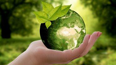 Eine Illustration zm Thema Natur, Nachhaltigkeit und Umweltschutz
